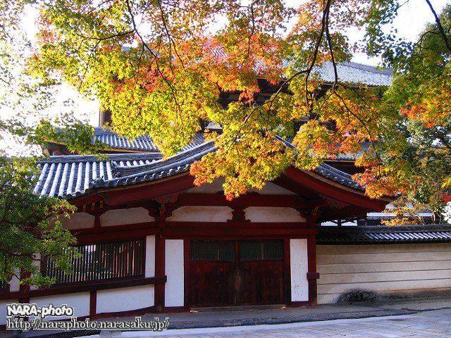 東大寺の紅葉5