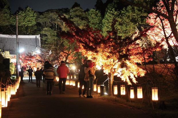 観音寺ライトアップ