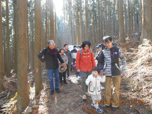4山のツアー