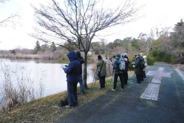 1._DSCF2003  水上池周辺探鳥会風景