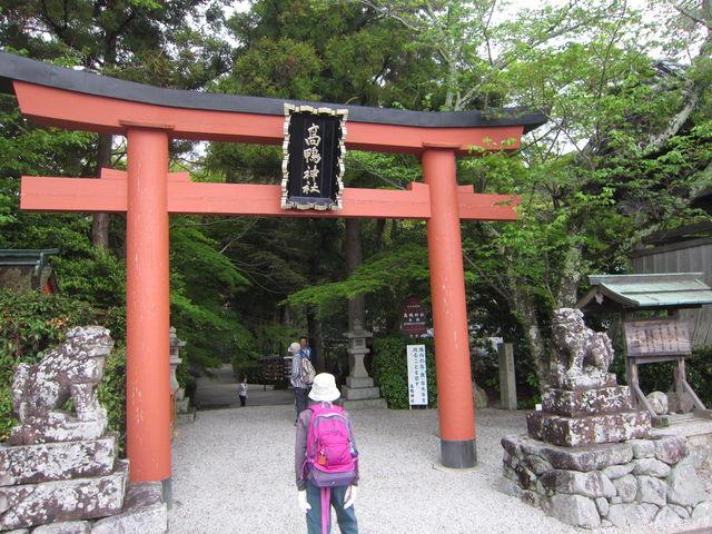 2.高鴨神社_9266