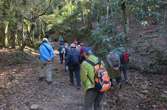 4.滝坂道DSC_0013 遊歩道を進む