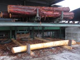 奈良の木材�