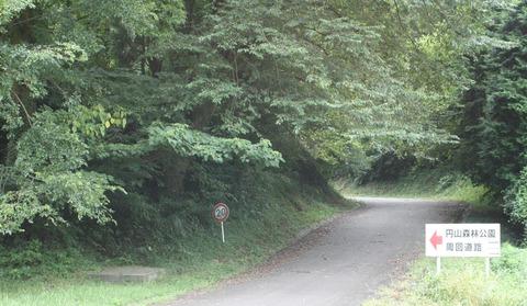 円山森林公園