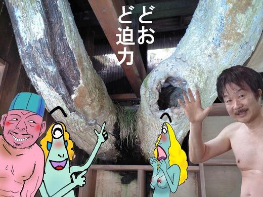 69、福島県二股温泉、柏旅館3