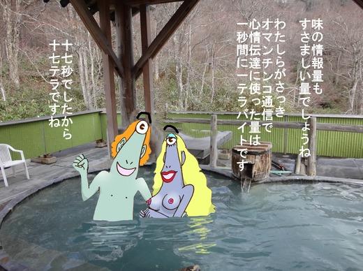 38、福島県幕川温泉、水戸屋旅館混浴5