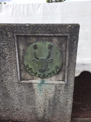 170606_maesawa26