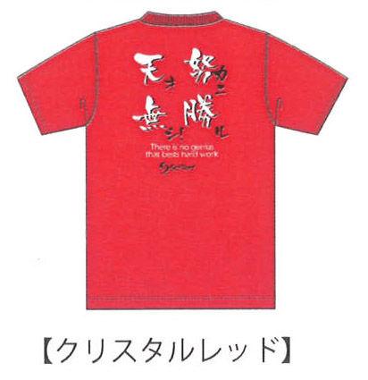 ソフテニTシャツ 2013 B クリスタルレッド