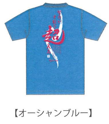 ソフテニTシャツ 2013 A オーシャンブルー