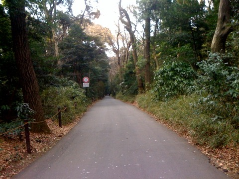 ブログ 散歩16 2011 3 20