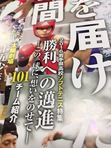 161101_iwate101