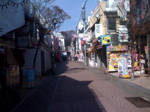 ブログ 散歩1 2011 3 10