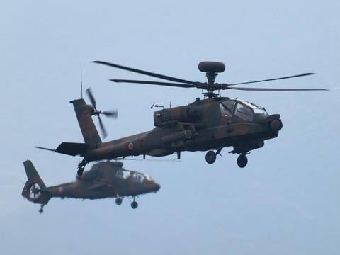 PPQ_AH-1Sheri_TP_V