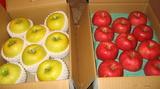 秋田のリンゴ1