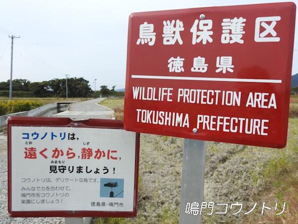 徳島県鳥獣保護区 鳴門コウノトリ鳥獣保護区