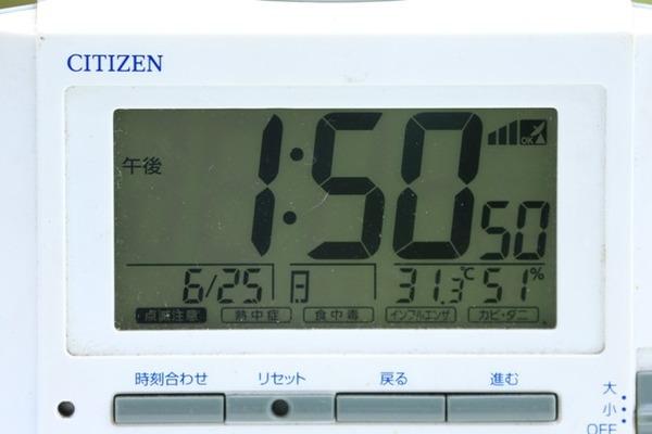 8Z0A3603