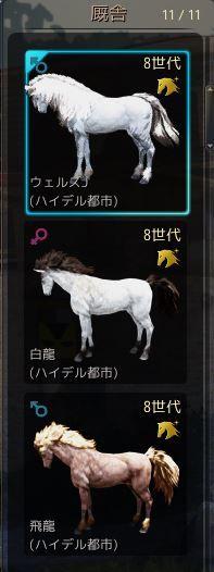 砂漠 8世代駿馬3頭
