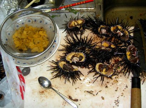 0012ムラサキウニの潮水浸し+トビウオのサシミとナメロ(赤みそ)
