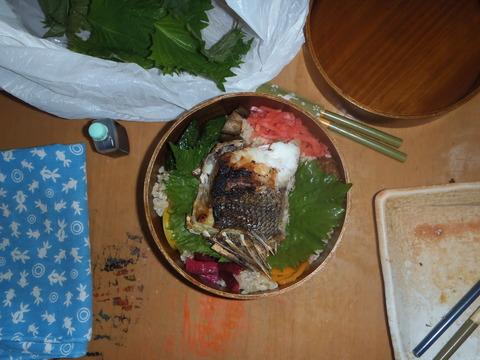 0173クロデエのサシミ、シオヤキ、カブト煮