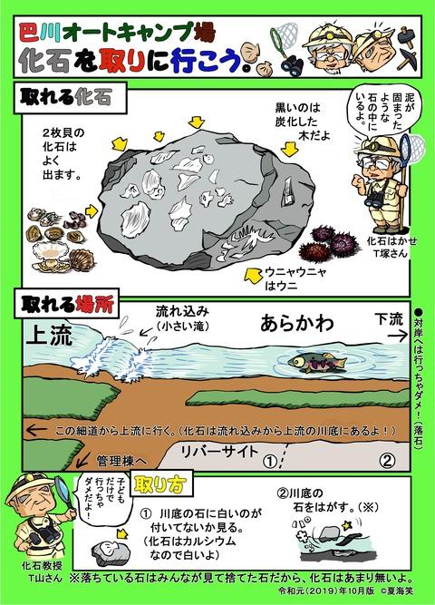 化石の取り方-3