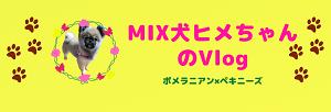 ブログ用MIX犬ヒメちゃんのVlog画像