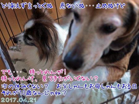 2017_05_01_03