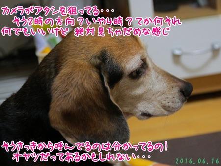 2016_06_23_4