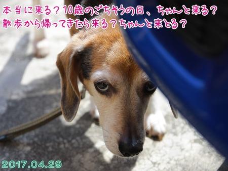 2017_05_01_05