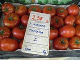 トスカーナ産トマト