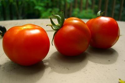 ital_tomatoes