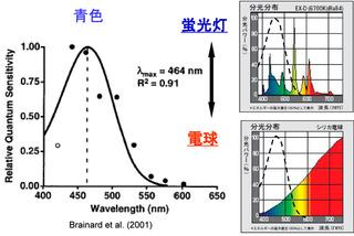 青色光源のメラトニン抑制