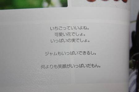 IMG_0849
