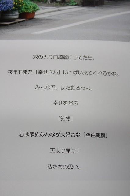 IMG_0862