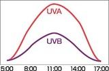 時間帯ごとの紫外線量