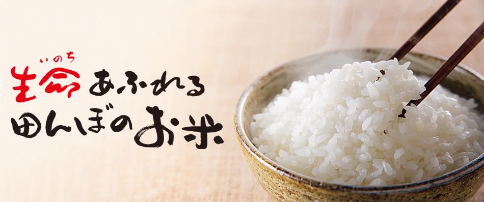 無農薬おいしいお米