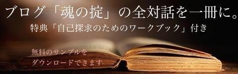 HPbook