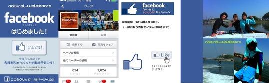 201208_FB_ptr