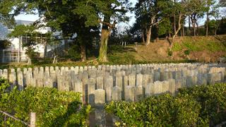 20100109桜山神社_04