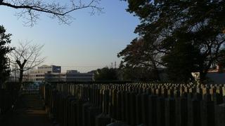 20100109桜山神社_10