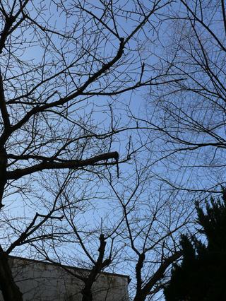 20100109高杉晋作終焉の地_004