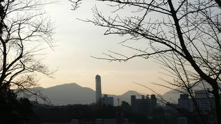 20100109桜山神社_02