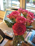 12.19 7クリストフのバラ