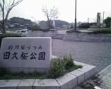 桜撮影4月5日