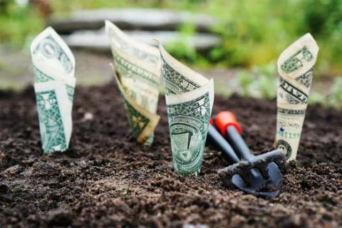 60才以降も収入があると年金が減る