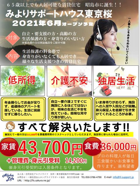 東京桜チラシ表