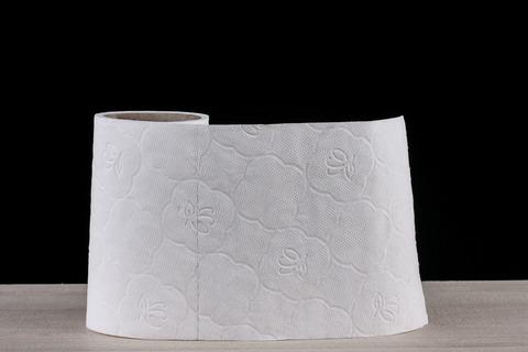 toilet-paper-2923445_1280