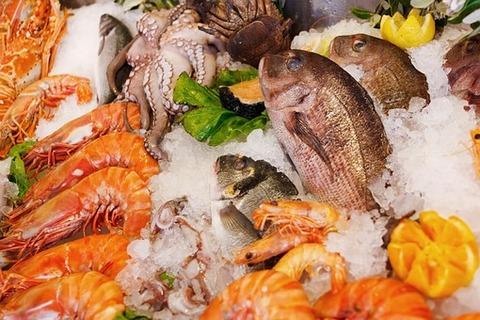 seafood-165220__340