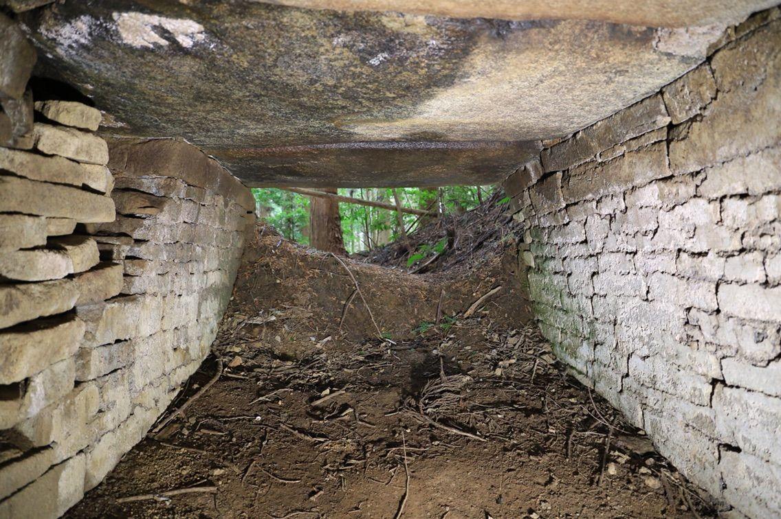 古跡探訪録 : 桜井市の石室探訪