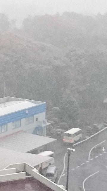 20161124 済 54年ぶりの東京 11月の初雪 (3)