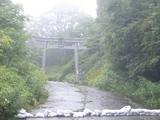 2008.8.24 高原キノコトレ �